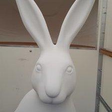 "A ""Hare"" Raising Announcement"